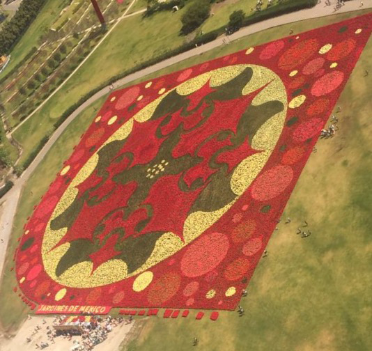 Largest-flower-mosaic