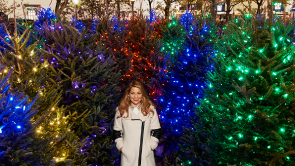 Largest display of illuminated trees