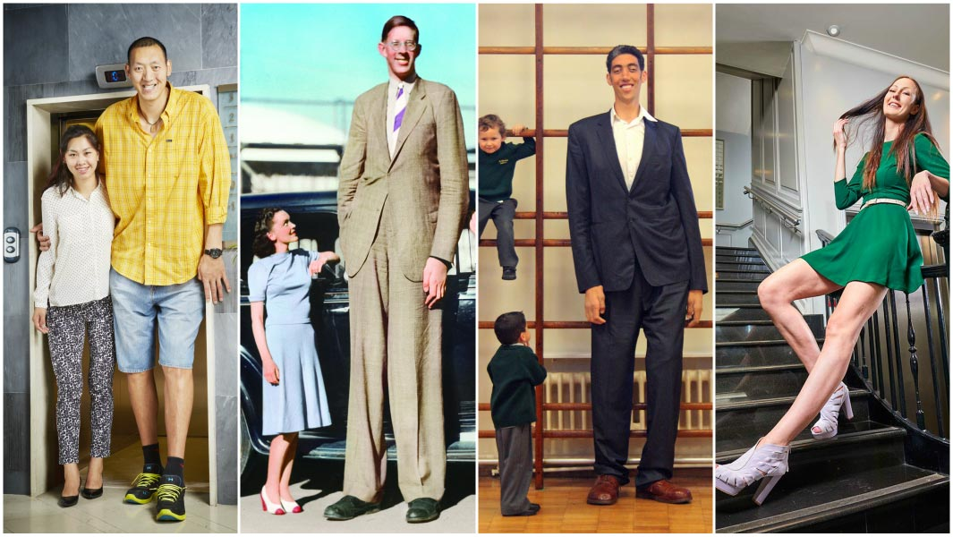 Tallest people in the world