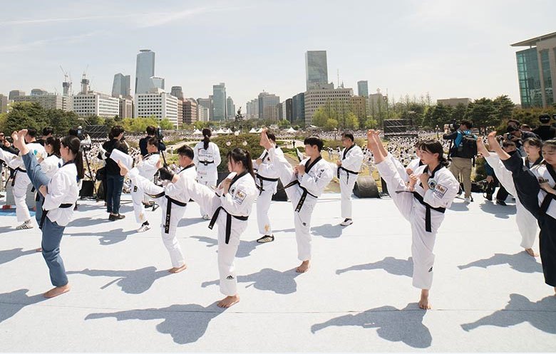 Largest Taekwondo display